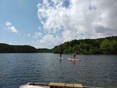 湖面をすいすい進めます。