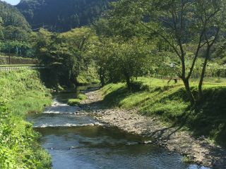 北浅川の渓流を利用した釣場です。木陰もあり爽やかです。