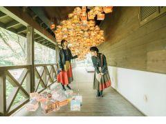 過去の開催時の様子(六甲高山植物園)