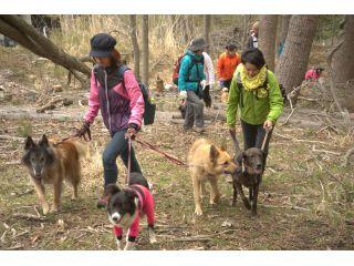 【お客様のご要望により、急遽8月10日限定開催決定】愛犬と鹿角採集散策ツアー[女性・カップルにおすすめ]