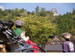 郡上八幡には「最も美しい山城」と呼ばれる郡上八幡城があります。歩いても30分ほどで行けますが、郡上八幡の観光の最後に、車で上がる事をお勧めします(笑)