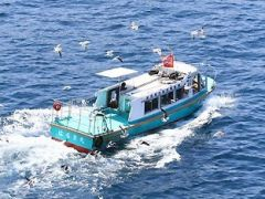 ワンコイン500円で水中透視船にも乗船♪