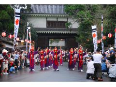 郷土芸能「泰平踊」は、おもに飫肥(おび)城下まつりで踊られて観ることができます