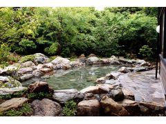露天「もりの湯」:まるで森の中で入浴しているかのようです!