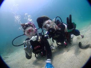 浅い場所からのダイビングが可能