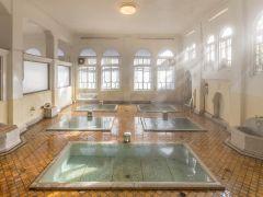 国の登録有形文化財「元禄の湯」