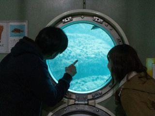 海底を歩いて、窓から海の中を鑑賞!