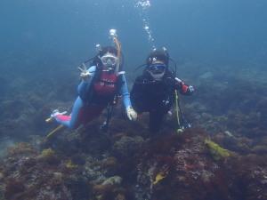 ★2名様以上 体験ダイビング★初心者歓迎!伊豆川奈で海の中を散歩してみませんか♪