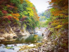 運が良ければこんな絶景の紅葉ラフティングも!※見頃は10月中旬~です。