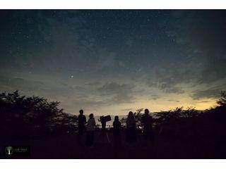 星空を見上げながら、望遠鏡を使った天体観測を楽しもう!