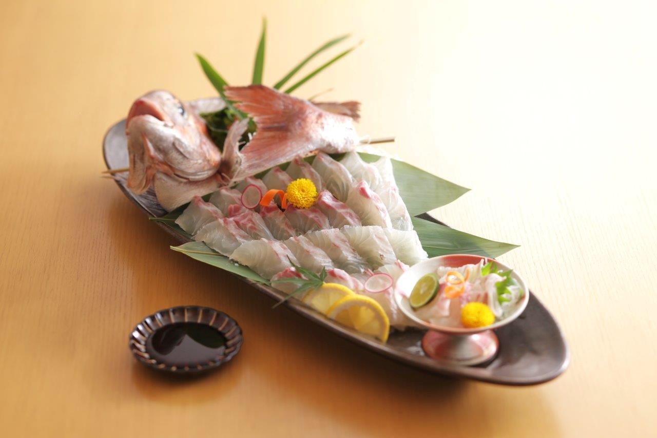 【 夜の部 】《◆御膳コース◆》新鮮な鮑の踊り焼きや活け造りが味わえる贅沢なプラ...