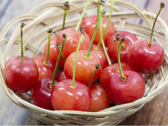 【さくらんぼ狩り体験 】旬のさくらんぼが食べ放題★広い農園でゆったりフルーツ狩り...