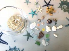 グラスに海の砂を入れたら、シーグラス・貝殻・サンゴ・ウミガメorヒトデを選びます♪