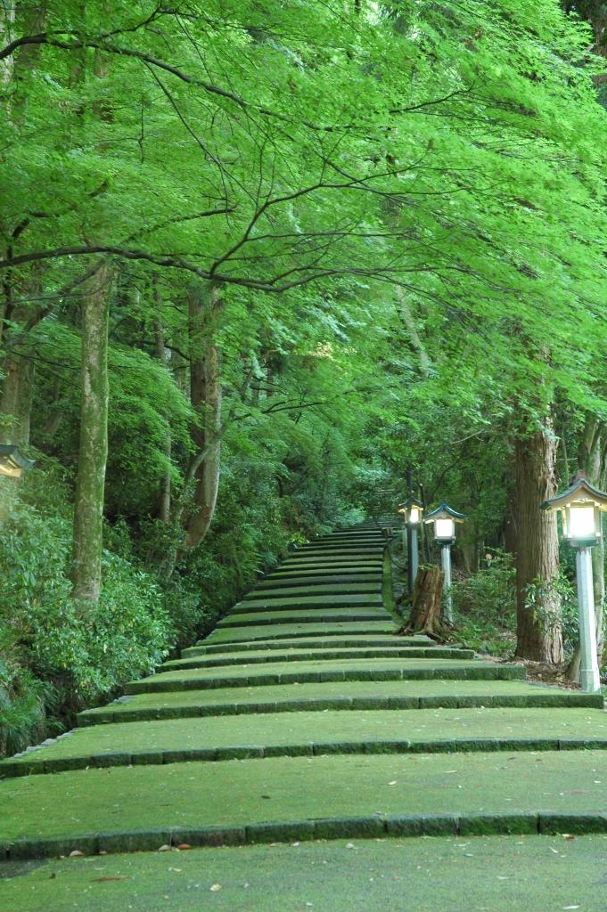 縁結びの白山さんと鶴来まち歩きジオツアー 地元ガイドが同行します!