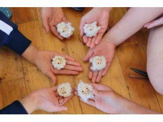 【土日10〜17時】コットンから始める復興支援♪100%オーガニックのコットンで作るコットンベイブ(人形)作り体験☆