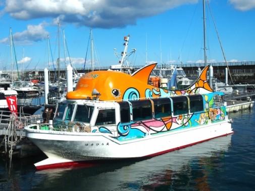 【約40分の遊覧船】★イルカのグラスボート★海中の様子が見えるグラスボートで伊豆...
