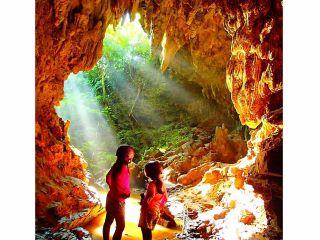 西表島トレッキングツアー神秘の鍾乳洞探検(ケイビング)で島旅を満喫しよう!