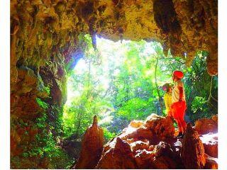 最高の体験をできる島旅を~西表島トレッキングツアー・鍾乳洞探検(ケイビング)