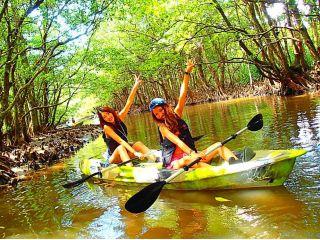 西表島を代表するマングローブの森をのんびりカヌーで漕いで秘境の泉へ&鍾乳洞探検(ケイビング)で島旅を満喫!西表島カヌーツアー
