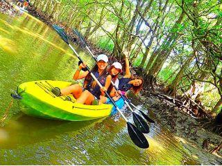 3人乗りカヌーもあるのでみんなで楽しめます。西表島カヌーツアー