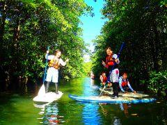 マングローブSUP(サップ)ジャンングルトレッキング秘境パワースポット巡り・西表島SUPツアー