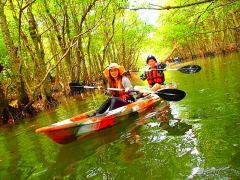 マングローブをカヌーで漕いで秘境パワースポット巡り・西表島カヌーツアー