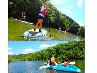 綺麗なマングローブの川をSUP(サップ)で漕いでみよう~西表島SUPツアー