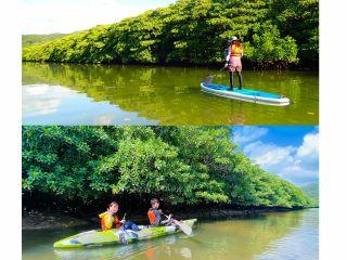 最高の笑顔になれる島旅体験を~西表島マングローブカヌーツアー