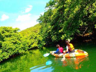 青空の下で誰でも楽しめるマングローブカヌー体験・西表島カヌーツアー