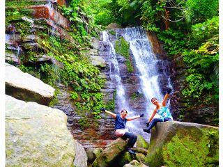 手付かずのリアルジャングルトレッキングで大自然を感じよう!西表島トレッキングツアー