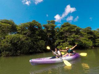【地域共通クーポン(現金払いのみ)利用OK】島人ガイドがご案内★マングローブカヌーアドベンチャー★宮良川のジャングルを冒険しよう!