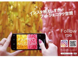 【インスタ映え!★体験型フォトジェニック空間★】\\PAPEPO MUSEUM入館プラン//【烏丸駅から徒歩2分!】#papepomuseum#京都フォトジェニック#インスタ映え