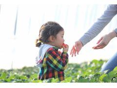 口に入れても安心な有機肥料へのこだわり!小さいお子様をもつお母さんも安心です♪