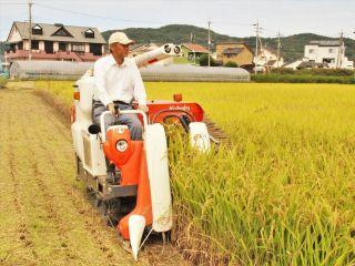 新米を収穫中の山田さん