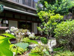 茶室から見える日本庭園では花々が季節の到来を教えてくれます