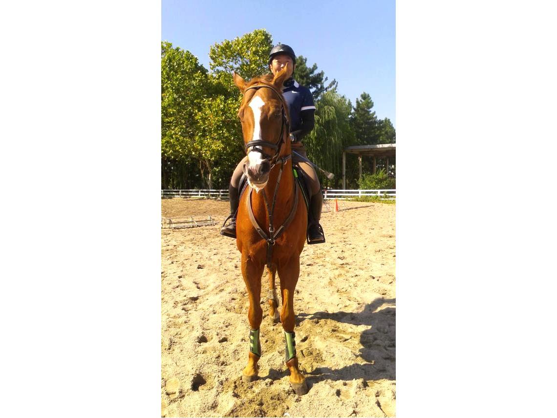 【初心者の方も安心♪ちょっぴりお試し乗馬体験★30分★】~新潟乗馬クラブで馬との...