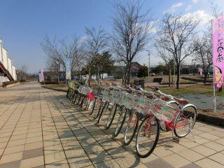 約100台の中からお好きな自転車をお選びください。補助輪付きやチャイルドシートもございます。