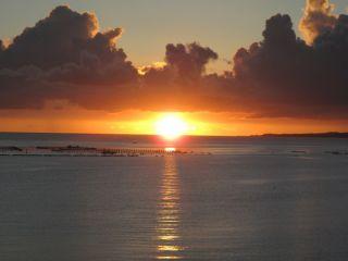 【午後半日1ダイブコース】《初心者大歓迎》美ら海水族館近くの海で楽々ボート体験ダイビング♪
