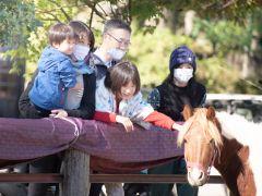 下宮浅間神社には馬がいます。この地域では昔から馬が馴染みのある動物で、荷物運びから食糧(馬刺しや馬肉、ホルモン煮等)として重宝されてきました。