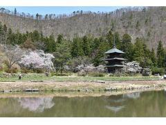 目の前には安久津八幡神社・歴史公園。