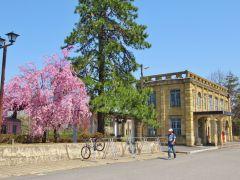 国指定文化財の旧高畠駅舎。自転車で15分ほどです。当時の車両も展示されています。