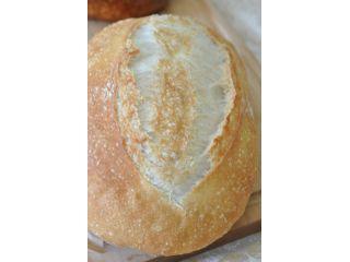 【宮城・仙台】*おひとり様2000円*天然酵母パン作り『入門レッスン』プラン!≪パン1種類作れます≫