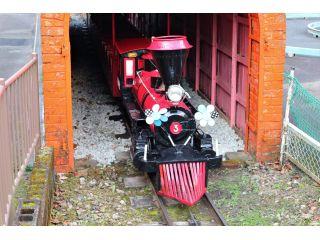 「こども汽車」開園当初からある歴史あるのりもの。現役です!