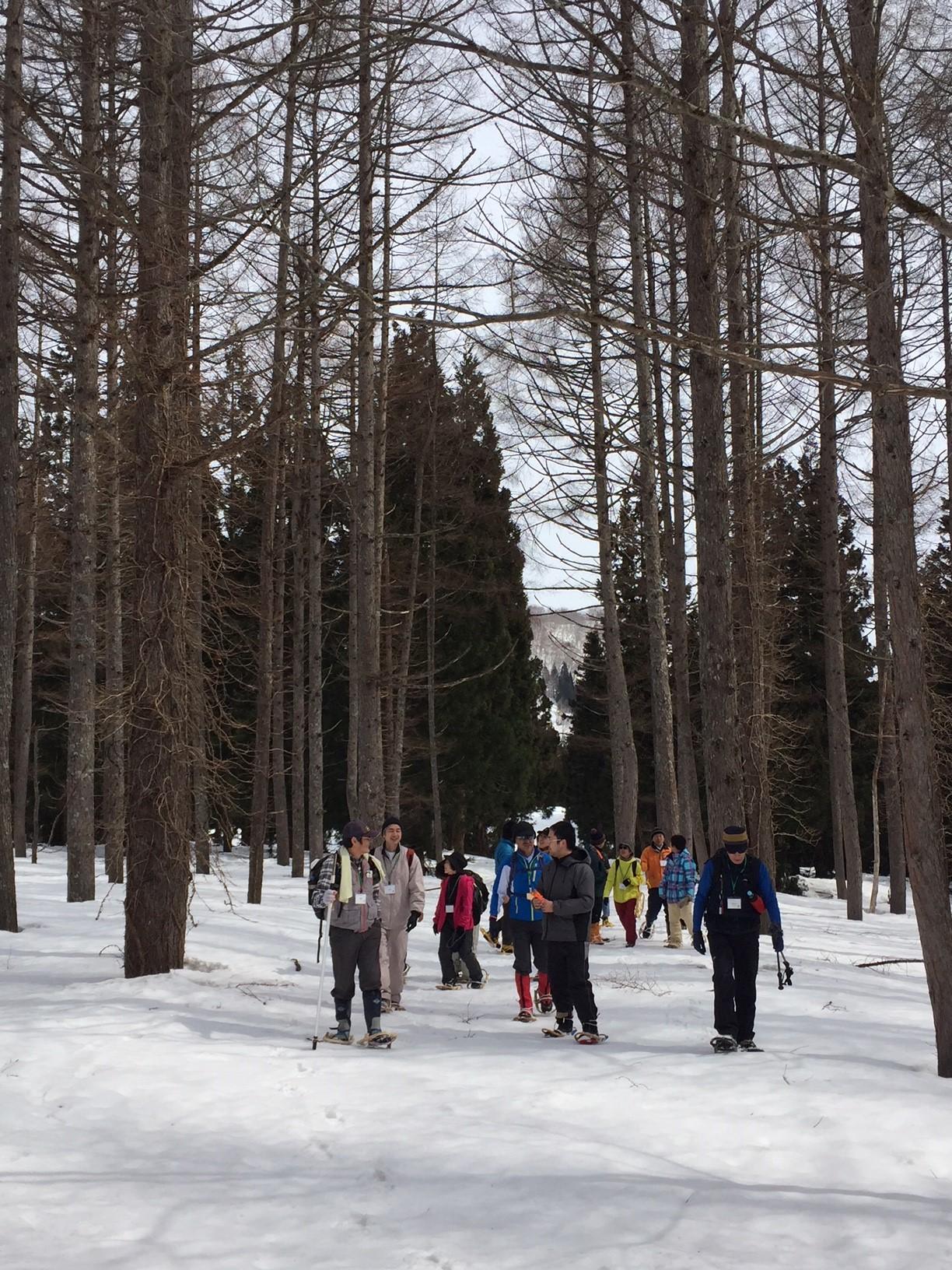 雪の足跡探検ウォーキング(中・上級コース)