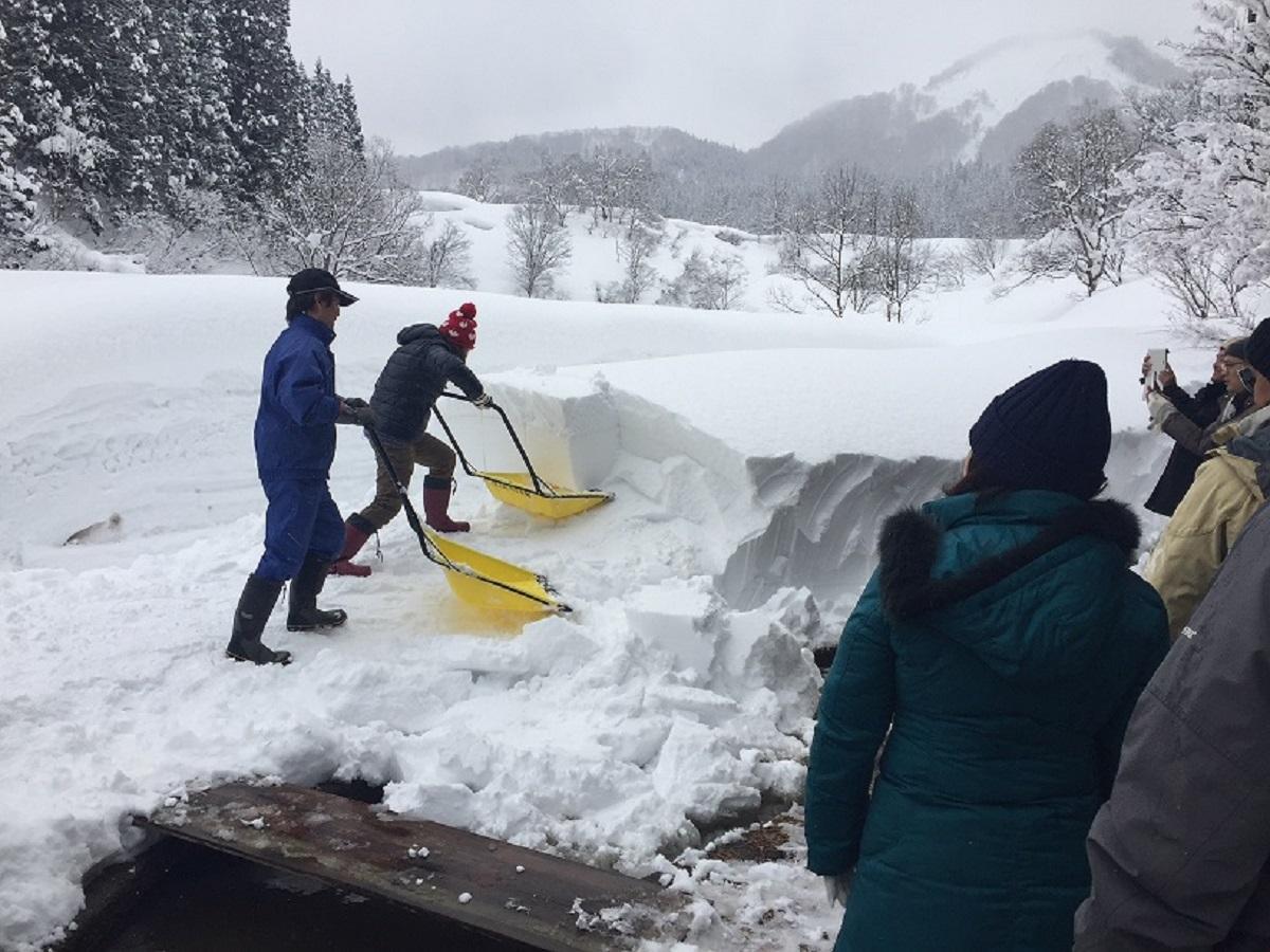雪ノコ・スノーダンプ雪消し体験
