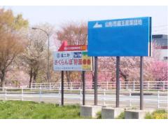 ②当園の案内看板が見えます この交差点には「ぐっと山形」さん、「シベール」さんがあります。