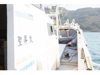 魚に愛される島、壱岐!玄界灘の引きの強さを感じよう