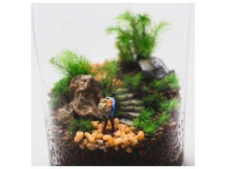2月からのご予約はこちら★【東京・杉並教室】薬瓶でつくる苔のテラリウム(90分)