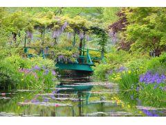 水の庭 睡蓮の咲く池ではジヴェルニーのモネの庭から株分けされた睡蓮が4月下旬~10月上旬まで開花します。