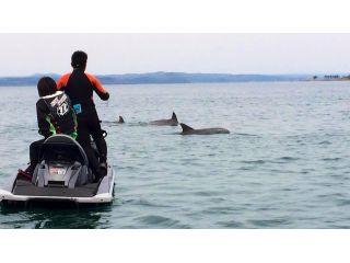 【要免許・水上バイク持参】※和倉港集合※野生のイルカに会える♪ベテランガイドが日本海を水上バイクでご案内します!※3台のご予約から催行いたします